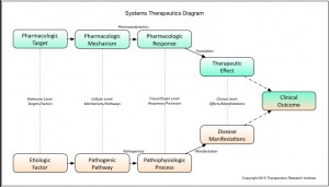 Systems Therapeutics Framework.graffle - 1